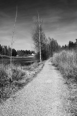 The Long Walk II B&W (PuffinArt) Tags: trees bw lake water norway nikon path pb puffinart nikkor vr d300 asker 18200mm spirabukta vandamalvig