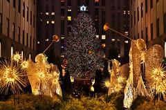 NYC Holiday 2014 (gigi_nyc) Tags: christmas nyc newyorkcity holiday christmastree christmaslights holidaylights holiday2014 christmas2014 2014holidaylights