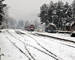 A train left the station (bbic) Tags: winter snow station train december decembrie gara slanicprahova