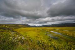 Alaska Landscape (maikelclaassen) Tags: usa alaska landscape highway ak roadtrip september explore 500 richardson 2014 px