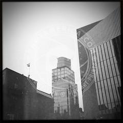 NEWYORK-1437