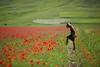 FLOWERS (Orione59) Tags: flowers italy patrizia castelluccio ef135mmf20 eos5dmkiii