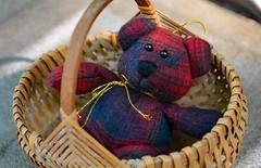 Bear in a Basket (BKHagar *Kim*) Tags: bear cute animal toy teddy fuzzy sweet teddybear stuffedanimal friendly plaid bkhagar