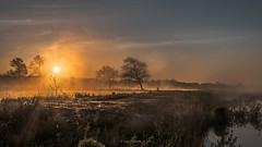 Sunrise (jojo54th) Tags: morning nature water sunrise canon germany deutschland eos early wasser ngc natur reserve peat devil moor morgen hille teufel torf naturreservat nettelstedt teufelsmoor frher 70d sonnenaugang largepaetbog grosesteufelsmoor
