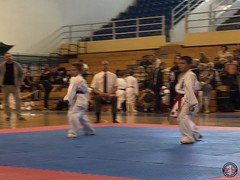 stefanou_15_5_2016_knockdown_184