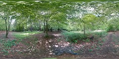 Greenbank Woods (Filmstalker) Tags: mobile woods labrador 360 hudson chocolatelabrador photosphere