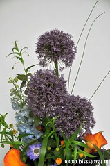 #Allium in #Top... (floralworkshops) Tags: calla allium delphinium
