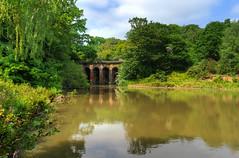 Bridge (coldsoul) Tags: bridge summer hampstead london pond