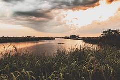 Loxahatchee - Sunset (- Anthony Papa -) Tags: sunset lake water path orange green matte anthony papa canon digital 5d mk ii canon5dmkii sky clouds shrubs alligator crocodile florida south sharp macbook pro 2015 lightroom