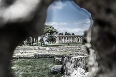DSC_9085 (Dan Kistler) Tags: paestum italy velia greek ruins temples trains