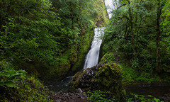 Born To Be Wild (Dreshad Williams) Tags: travel green tourism nature water oregon landscapes photo waterfall day veil pacific northwest hiking vibrant scenic peaceful landmark falls national gorge lush bridal exploration majestic cascade secluded 500px