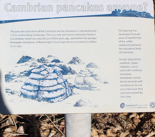 Cambrian Pancakes, Riversleigh
