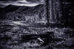 June 2016: Colorado High Country (Asian traveler) Tags: usa june us colorado unitedstates grandlake northamerica 2016 digitalcapture