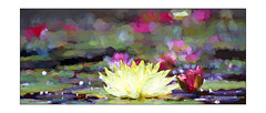 1y (Emet Martinez Photography) Tags: painterly flower waterlilies impressionism missionsanjuancapistrano impressionist digitalphotography botanicals photopainting impasto topazsoftware emetmartinezphotography emetmartinezcom topazimpression