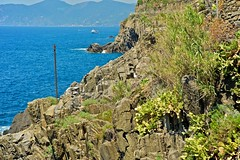 2016-07-04 at 14-06-42 (andreyshagin) Tags: riomaggiore italy architecture andrey shagin summer nikon d750 daylight trip travel town tradition beautiful