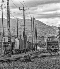 Rails & Poles (robinlamb1) Tags: cars monochrome bc power tracks rail railway poles switches boxcars abbotsford tankers