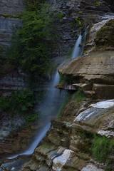 Enfield Falls (PNG441) Tags: enfieldglen ithacany summer newyorkstate landscape waterfall newfieldny glen mist stream outdoors roberthtremanstatepark moss creek gorge enfieldcreek