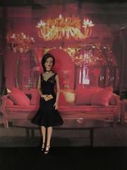 Pretty Woman Tribute10 (annesstuff) Tags: annesstuff doll fashiondoll tonnerdoll roberttonner sydneychase tylerwentworth prettywoman juliaroberts vivian businessdinner