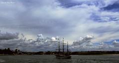 Trealberi -  Foz do Douro - (IVAN 63) Tags: fozdodouro oporto portugal porto portogallo sea beach bay sky velieri barche boats