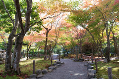 (GenJapan1986) Tags: 2014       nikond600 kyoto japan temple autumn  zf2 distagont225 carlzeiss