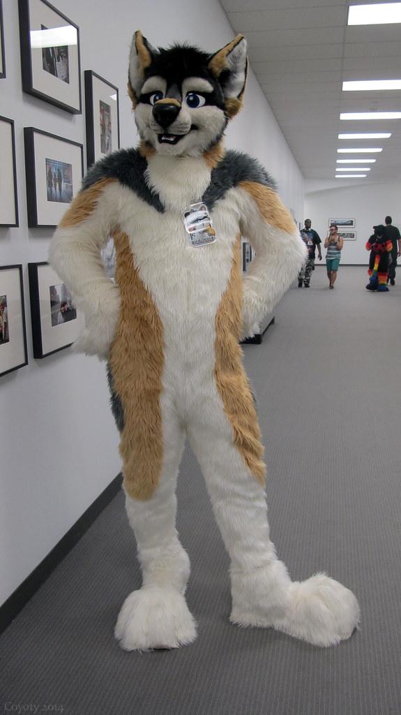 Wolf furry costume - photo#9