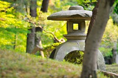 Small lantern in the trees (the.bryce) Tags: japan hiroshima shukkeiengarden