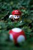 Its me! (Les VegeTables) Tags: mushroom nikon nintendo super mario 60mm clover bros d80