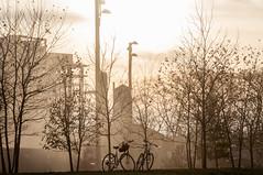 Brooklyn Waterfront Park-Nov 2014 (aloucha) Tags: nyc newyorkcity november autumn newyork fall brooklyn fire harbor nikon waterfront smoke dumbo brooklynbridge bklyn 2014 brooklynbridgepark d90