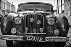 Jaguar (rikiomgawa) Tags: blackandwhite bw cars monochrome losangeles nikon jaguar automobiles artwalk lightroom d7000 silverefexpro thebreweryartlofts