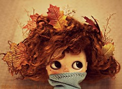 And the Autumn wind blows..