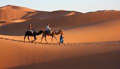Dune di Merzouga - Sahara - Marocco (patrizia.lungonelli) Tags: dune morocco marocco sabbia merzouga dromedari desertosahara