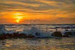 Sunset (Snoeijer) Tags: sunset sea seascape beach nature strand landscape waddeneiland zonsondergang dune noordzee natuur zee northsea duinen texel landschap zeegezicht nikkorafs1685mmf3556gedvr nikond3100