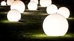 Glowing Garden (think4d) Tags: vienna wien grass bulb lights wiese ground gras prater lichter nachts kugeln leuchten