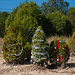 Trees_of_Loop_360_2014_003