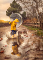 Splash ({jessica drossin}) Tags: road portrait reflection water leaves rain yellow umbrella fence puddle photography leaf child boots splash wellies galoshes slicker jessicadrossin