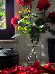 Wilted roses (VillaRhapsody) Tags: red roses rose petals vase wilted wilting cy2 challengeyouwinner