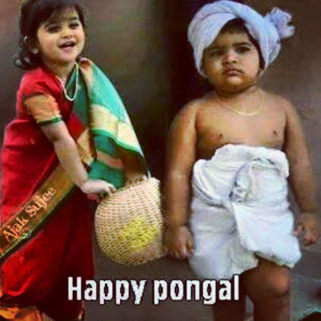 This pongal wishes is for all my friends by prinz anzelina