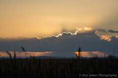 Sun behind the Cloud (1) (Daz James Photography) Tags: newportwetlands
