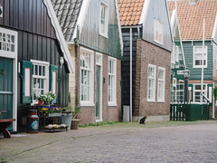 P5150076 (veneman) Tags: cat houses marken