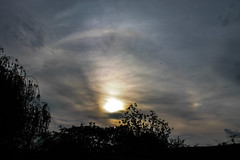 Parhelion (Sundog) & Faint Upper Tangent Arc 07/05/16 (Spicey_Spiney) Tags: parhelion sundog uppertangentarc