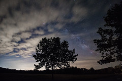 Milky Way 6-9-2016 (adamwilliams4405) Tags: trees sky stars landscapes astrophotography starry milkyway