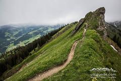 Perfekter Trail fr Lufer (ulligunde.com - Bergsport.Reisen.Fotografie) Tags: nagelfluh nagelfluhkette nebel sturm allgu immenstadt sonthofen laufen running trail