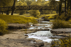 Watch and Listen (Stacey Shay) Tags: bridge trees light summer reflection nature water grass creek forest river landscape nikon stream 85mm missouri backlit current missouriphotography missouriphotographer staceythompsonphotography