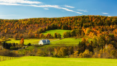 Toy Barn (bprice0715) Tags: travel autumn red horse orange green fall nature colors beautiful beauty barn canon landscape outdoors colorful foliage naturephotography landscapephotography beautyinnature canoneos5dmarkiii canon5dmarkiii
