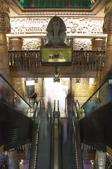 Harrods stairs (filippo.bassato) Tags: uk trip england london harrods londra filippobassato