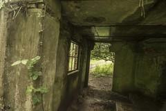 It have seen better day's (happad fotografie) Tags: old light de nikon ruins blauwe rhenen kamer d610 2470
