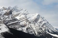 Peyto Lake (Rumbelievable) Tags: canada banff peyto