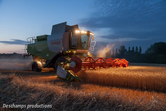 16072015-IMG_1659 (Deschamps productions) Tags: tractor night wheat harvest combine nuit harvester tracteur moisson bl fendt claas lexion batteuse cestari transbordeur moissonneuse