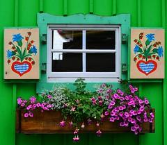 Starnberg - Window (cnmark) Tags: flowers lake window germany see pattern fenster starnberger starnberg boathouse muster bavarian bayerisches ©allrightsreserved