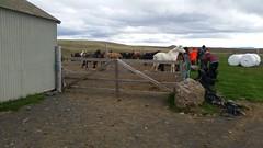 Tuesday: Árbúðir – Hveravellir Mountain Cabin (EdRyder) Tags: iceland ishestar kjoluriceland kjolur